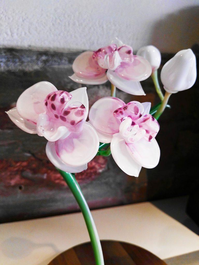 """Alessia Fuga - Orchidea esposta in occasione della seconda edizione di """"Col Vero.. Se Incontra"""""""